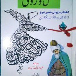 Shams Wa Rumi