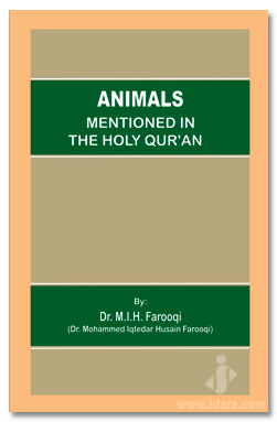Animals Mentioned In The Holy Quran