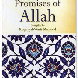 The Beautiful Promises of Allah