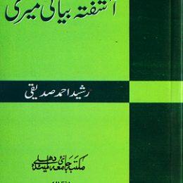 Aashfata Bayani Meeri