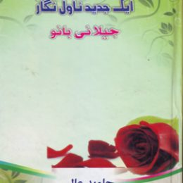 Ek Jadeed Novel Nigar Jeelani Bano
