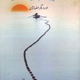 Ikkisvi Sadi Me Urdu Novel Aur Deegar Mazameen