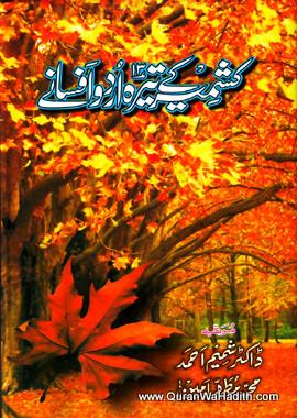 Kashmir Ke 13 Urdu Afsanay, کشمیر کے تیرہ اردو افسانے
