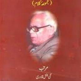 Kulliyat e Ale Ahmed Suroor