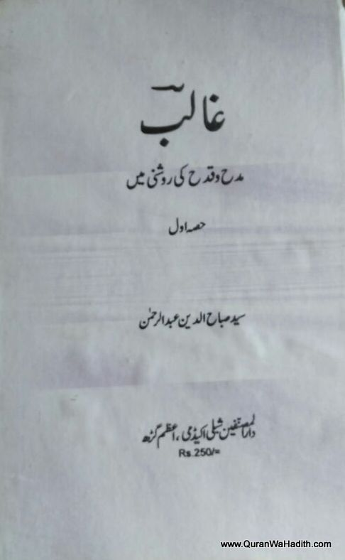 Ghalib Madh o Qadah Ki Roshni Mein, غالب مدح و قدح کی روشنی میں