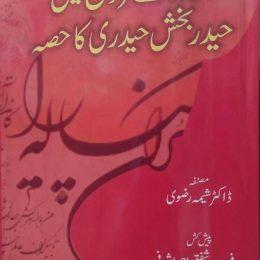 Urdu Key Farogh Mein Haider Bakhsh Haideri Ka Hissa