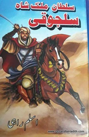 Sultan Malik Shah Saljuki, Novel, سلطان ملک شاہ سلجوقی ناول