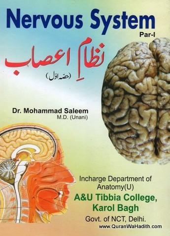 Nizame Asab, Nervous System Urdu, نظام اعصاب
