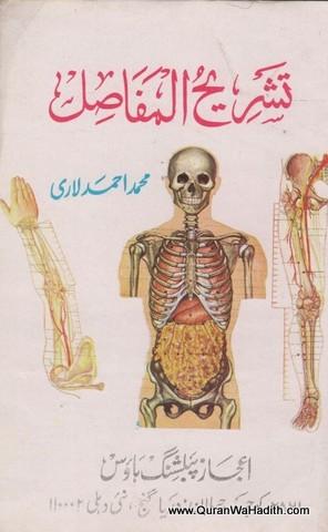 Tashreeh ul Mufasil, تشريح المفاصل