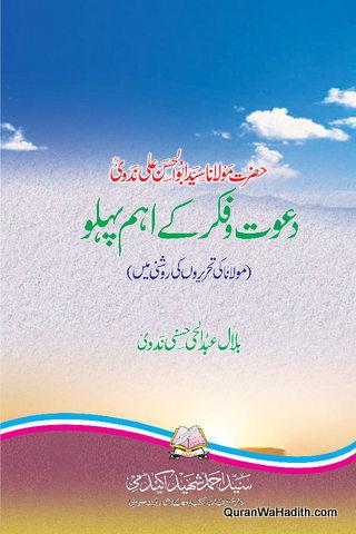 Maulana Syed Abul Hasan Ali Nadwi Dawat o Fikr Ke Aham Pehlu,  حضرت مولانا سید ابوالحسن