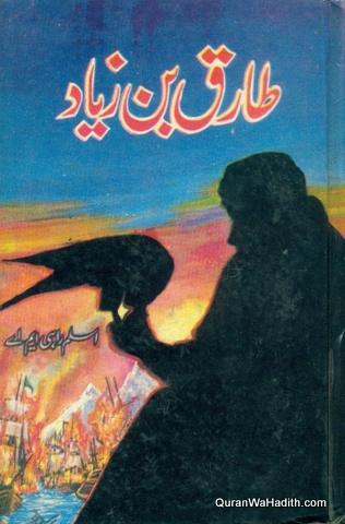 Tariq Bin Ziyad Novel, طارق بن زیاد ناول