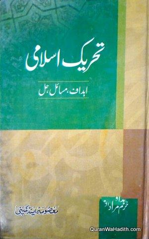 Tehreek e Islami, تحریک اسلامی، اہداف مسائل حل