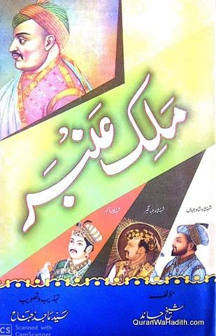 Malik Ambar, ملک عنبر, مغلوں کی تین پشتوں سے ہولا لینے والے دکن کے مردآہن کی داستان حیات