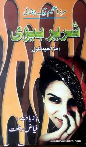 Shareer Biwi, Mazahiya Novel, شریر بیوی, مزاحیہ ناول