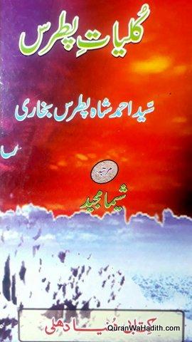 Kulliyat e Patras, Syed Ahmed Shah Patras Bukhari, کلیات پطرس, سید احمد شاہ پطرس بخاری
