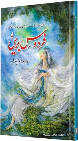 Firdaus e Bareen Novel, فردوس بریں ناول