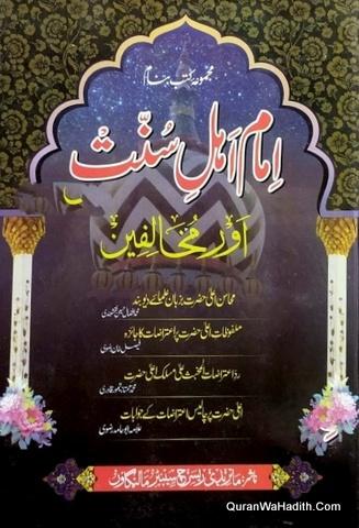 Imam Ahle Sunnat Aur Mukhalifeen, امام اہل سنت اور مخالفین